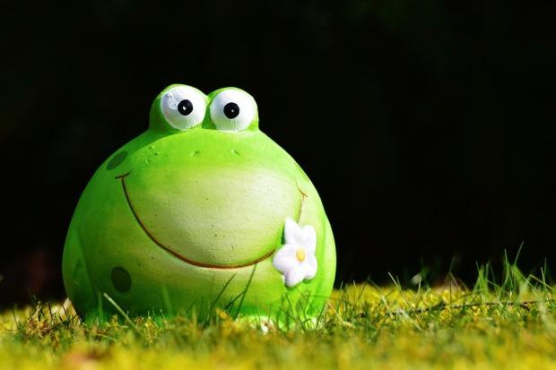 Gröna personlighetstypen är snäll och lite menlös