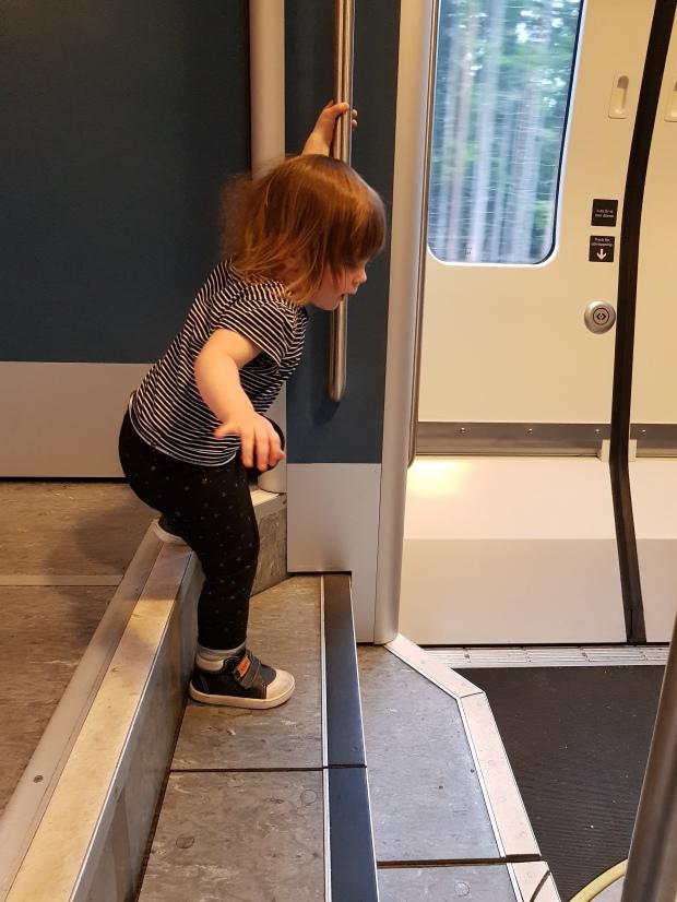 Sjövild galning på tåget