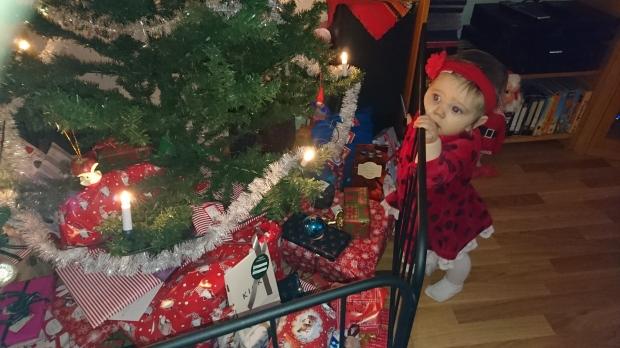 Akta julgranen